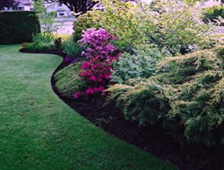 Landscaping Service in Torrance